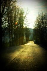 You and I have memories longer than the road that stretches out ahead (Cristian Ştefănescu) Tags: street music cold sunshine lyrics drum strasse romania beatles raod thebeatles weg sonnenschein soare rumänien românia rece șosea carașseverin valeaalmăjului caraș