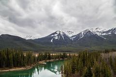 Canadian Rockies, Alberta, CA (DaliaGallery) Tags: canada nature rockies alberta