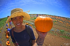 IMG_6413 (aaron_boost) Tags: smile happy hawaii oahu wife glowing honolulu ohana aaronboost