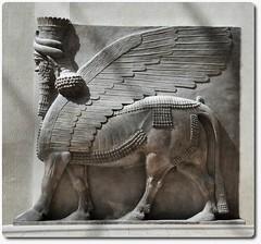 Winged human-headed bull (oar_square) Tags: sculpture man paris france ancientcivilization mesopotamia lamassu guardians assyrian louvremuseum ancientneareast shedu neareasternantiquities compositefigure wingedhumanheadedbull thresholdfigures bullandbird 715bce