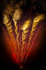 Fan (simontheintrepid) Tags: sky blur colour night focus fireworks bokeh guyfawkes bearsted d7000