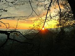 (federicogrillo94) Tags: wood autumn sunset sun mountain nature forest landscape tramonto natura sole autunno montagna paesaggio bosco foresta cansiglio