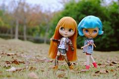Autumn walk in the Century Park.