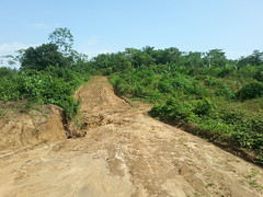 Strasse nahe Douala