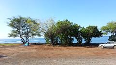 20141109_093212 (dntanderson) Tags: hawaii maui 2014 november09