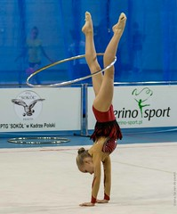 20141115-_D8H1265 (ilvic) Tags: gymnastics