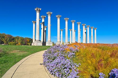 Capitol Arboretum Columns - HDR