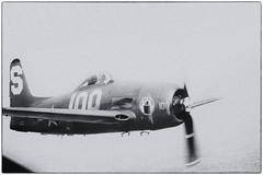 Grumman F8F BEARCAT (patrick_allenbach) Tags: wwii grumman hlice chasseur f8fbearcat 2meguerremondiale monomoteur monoengine