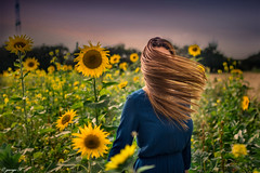inspiration (A M G1 (george)) Tags: canon 550d sigma photography picture portrait outdoor shoot femme girl woman sunset hair sunflower 35mm