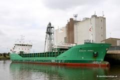 Ship. Arklow Rebel 9291731 (dickodt65) Tags: ship coaster boston portofboston arklow