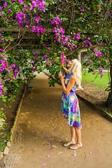 DSC_5386 (sergeysemendyaev) Tags: 2016 rio riodejaneiro brazil jardimbotanico botanicgarden     outdoor nature plants   flowers   green  beauty