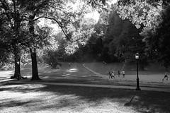XT1-10-11-15-442-2 (a.cadore) Tags: fujifilmxt1 fujifilm xt1 zeissbiogon28mmf28 biogont2828 zeiss carlzeiss newyorkcity nyc uptown uws centralpark landscape candid blackandwhite bw