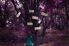 Which way? (misa.stahlova) Tags: 365 365project conceptual surreal surrealism selfportrait portrait female imaginative wonderland pink trees forest outdoor people canon dreamland whimsical dreamy manipulation passion