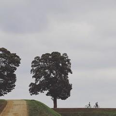 Walk (YULIA M) Tags: outdoor walk kastellet bike couple people trees nature danmark copenhagen