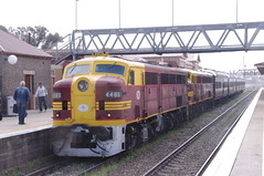 4486 at Goulburn. (Free Rail Photography.) Tags: nswgr sra state rail 44 class diesel locomotive heritage passenger train railway station platform preservation goulburn nsw australia