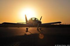 201002ALAINTR85 (weflyteam) Tags: wefly weflyteam baroni rotti piloti disabili fly synthesis texan airshow al ain emirati arabi uae