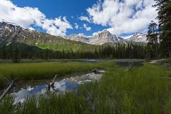 Just Heaven on Earth ... (Ken Krach Photography) Tags: albertacanada