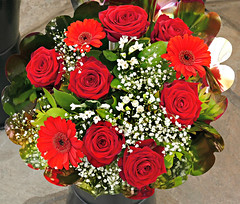 Red Roses (Colorado Sands) Tags: red roses flowers bouquet floral fleur flores flower fiori fleurs sandraleidholdt ajaccio corsica france market cutflowers