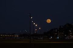Full moon. (Pablin79) Tags: sky landscape city street nature night light outdoor urban moon silhouette colors evening black dark shadows dawn dusk lanterns argentina full misiones posadas