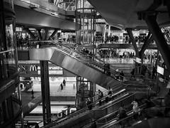 busy (paddy_bb) Tags: paddybb 2016 deutschland germany cityscape berlin bw olympusomd hauptbahnhof trainstation