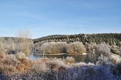 Am Haunestausee (Uli He - Fotofee) Tags: ulrike ulrikehe uli ulihe ulrikehergert hergert fotofee nikon nikond90 haune haunestausee winter schnee eis eisundschnee kalt klte bume gefroren zauberhaft winterlich stimmungsvoll blau blauerhimmel
