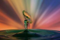 Rise (Wim van Bezouw) Tags: water drop speed object colour highspeed sony ilce7m2