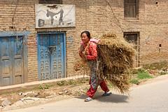 Sunakhoti (Bertrand de Camaret) Tags: nepal sunakhoti asie asia femme woman bertranddecamaret paille portage karate rue street ngc nationalgeographic