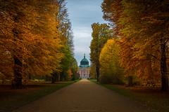 Herbst in Potsdam (Sascha Gebhardt Photography) Tags: nikon nikkor d800 2470mm lightroom potsdam herbst bunt photoshop fototour fx travel roadtrip reise reisen germany deutschland haida