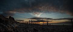 Holy Island Sunrise (g3az66) Tags: holyislandsunrise holyisland lindesfarne northumberland farne islands farneislands sunrise
