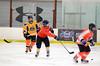 DSC_9060 (ice604hockeyleague) Tags: ttn gbr