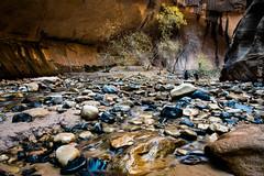 Narrows (cuddleupcrafts) Tags: narrows zions national park utah stream red rock landscape
