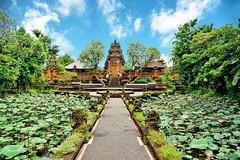 Saraswati Temple in Ubud, Bali (Ormastudios) Tags: bali indonesia hindu indian ubud lotus temple saraswati