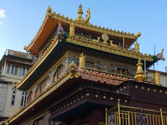 Mcleodganj_7301 (Manohar_Auroville) Tags: macleodganj mcleod ganj dharamshala tibet tibetan culture heritage himalaya himatyal pradesh india manohar luigi fedele dalailama forest mountain village