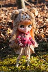 Nice Autumn Walk