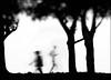 F_47A2367-3-BW-Canon 5DIII-Canon 70-300mm-May Lee 廖藹淳 (May-margy) Tags: 曾經 maymargy bw 黑白 人像 剪影 脈動 樹木 走道 模糊 散景 街拍 streetviewphotographytaiwan 天馬行空鏡頭的異想世界 mylensandmyimagination 線條造型與光影 linesformandlightandshadows motion 心象意象與影像 naturalcoincidencethrumylens humaningeometry 宜蘭市 台灣 中華民國 taiwan repofchina f47a23673bw portrait silhouette trees trai blur bokeh yilancounty canon5diii canon70300mm maylee廖藹淳 唉