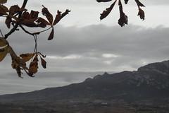 Herrera (eitb.eus) Tags: eitbcom 27117 g1 tiemponaturaleza tiempon2016 alava laguardia miguelangellopezdelacalle