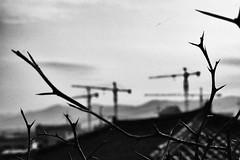 Ephemere 169 (lunecoree) Tags: coree korea canon 30d noir et blanc black white extérieur monochrome bâtiment