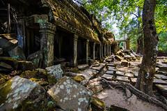 Side Wall (Arbron) Tags: cambodia taprohm asia2015 rajavihara siemreap temple   krongsiemreap kh