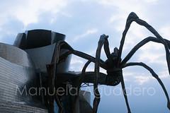 #guggenheim #museoguggenheim #museo #museum #araa #spider #2015 #bilbao #vizcaya #pasvasco #espaa #spain #ciudad #city #viajar #travel #viaje #trip #turismo #tourism #paisaje #landscape #photography #photographer #sonyalpha #sonyalpha350 #sonya350 #alp (Manuela Aguadero) Tags: vizcaya espaa bilbao paisaje turismo travel landscape viaje photography spain museo city pasvasco sonya350 sonyalpha photographer spider museoguggenheim trip sonyalpha350 ciudad 2015 tourism museum viajar guggenheim araa alpha350