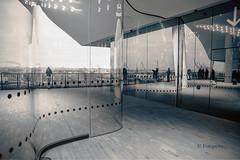 Drinnen oder draußen? (petra.foto busy busy busy) Tags: monocrom aussicht ausblick hafen hamburg elbphilharmonie germany architektur fotopetra canon 5dmarkiii
