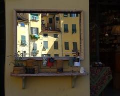 visione alternativa (fotomie2009) Tags: lucca piazza anfiteatro toscana tuscany italy italia reflection riflesso