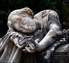 (2405) Cementeri Municipal d'Alcoi (QuimG) Tags: cementerimunicipaldalcoi alcoi alacant paísvalencià splash vintage art panasonic quimg quimgranell joaquimgranell afcastelló specialtouch obresdart