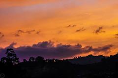 Atardecer de los venados (juantamayoperez) Tags: atardecer de los venados cielo sky naranja orange sunset afternoon deer nube puesta sol cloud sun crepusculo ano anocheser anochecer downsun down