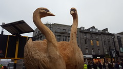 Twelve Days of Christmas Aberdeen - Seven Swans (Royan@Flickr) Tags: twelve 12 days of christmas wooden carvings trail garry shand wood carver aberdeen 2016