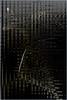 16-390 (lechecce) Tags: 2016 abstract blackandwhite nikonflickraward flickraward digitalarttaiwan monochrome shockofthenew awardtree art2016 netartii artdigital trolled sharingart blinkagain