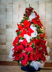 Christmas tree display (Victor Wong (sfe-co2)) Tags: japengo restaurant waikiki hyatt regency hotel honolulu hawaii usa ornament red orange traditional hawaiian familystyle christmas tree display artificial fake bouquet flower plant