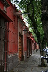 Coyoacan (A30_Tsitika) Tags: mexico df coyoacan moocard fotopaseos fotopaseocoyoacan estoesloqueve