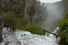 Plitvice national park, Croatia (Miche & Jon Rousell) Tags: trees green yellow waterfall lakes croatia unesco cascades limestone travertine karst tufa beech plitvice plitvicka plitvicenationalpark