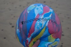 16-11-2014 (Copperhobnob) Tags: beach singapore aberdeenshire balloon stcombs hippopotamusrestaurantgrill