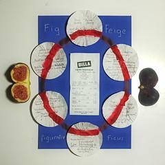 """""""an apple a day keeps the doctor away - An ENSO (Japanese: circle) a Day ..."""" 7. Oktober 2014: Brainstorming Blue Fruits: Figs - Blue + Red = Violet ~ Feigen - Rot + Blau = Violett Farbe der Balance, des Feminismus - sagt der Hausverstand beim Narrenturm"""